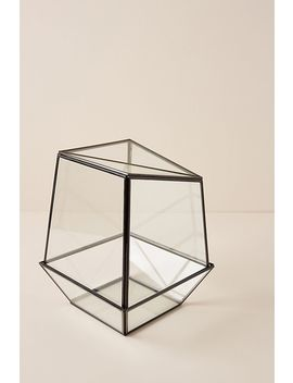 Glass Terrarium by Anthropologie