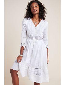 Angi Lace Midi Dress by Velvet By Graham & Spencer