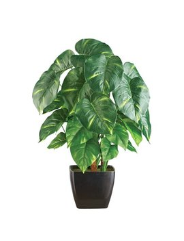 Artificial Potted Pothos Plant Houseplant by Collections Etc