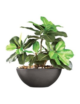 Rubber Tree Maintenance Free Artificial House Plant With Ceramic Pot, Black by Collections Etc