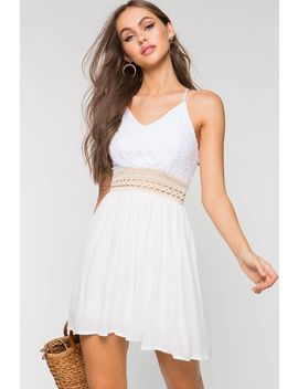 Katelyn Lace Skater Dress by A'gaci