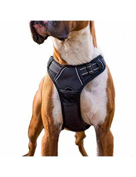 Rabbitgoo No Pull Dog Harness Adjustable Pet Vest Harnesses With Handle, Easy Control Front Walking Harness With 2 Metal Leash Clips, Reflective Dog Vest Comfortable Padded For Large Medium Small Dogs by Rabbitgoo
