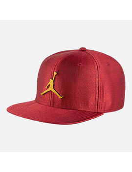 Unisex Air Jordan Jumpman Elephant Print Ingot Pro Snapback Hat by Nike