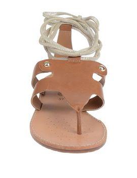 Geox Flip Flops   Footwear by Geox