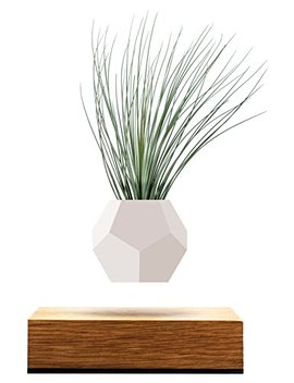 Lyfe   Original, Authentic Floating Levitating Plant Pot For Air Plants (Oak Base, 12 Sided Geodesic Silicon Planter) by Flyte