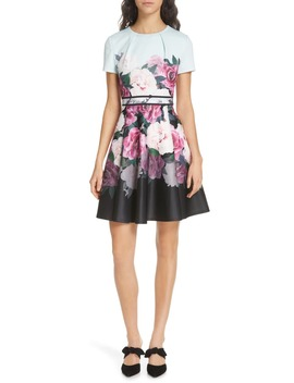 Wilmana Magnificent Skater Dress by Ted Baker London