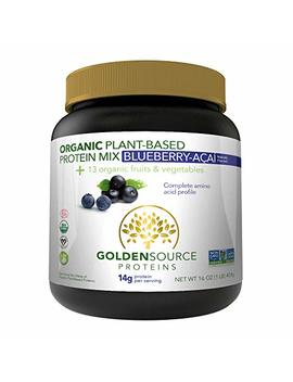 Golden Source Proteins Organic Plant Based Protein, Blueberries Acai, 1 Pound by Golden Source Proteins