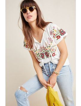 Elodie Embroidered Top by Anthropologie