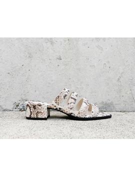 Ingrid Square Toe Strappy Mid Heel by Freda Salvador