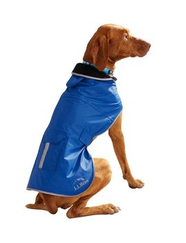 Trail Model Rain Jacket For Dogs by L.L.Bean