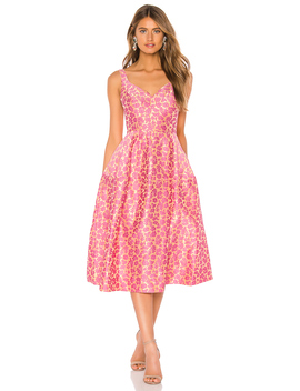 Fit And Flare Dress by Jill Jill Stuart