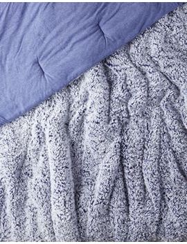 Aeo Apt Twin Xl Sherpa Comforter by American Eagle Outfitters