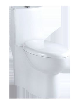 Aqualife Corp Colorado 1.28 Gpf Elongated One Piece Toilet (Seat Included) by Aqualife Corp
