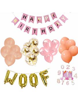 Jpb Girl Dog Birthday Party Supplies, Pet Birthday Crown/20 Pieces Pink Balloons/Happy Birthday Banner/Woof Letter Latex Balloons by Jpb