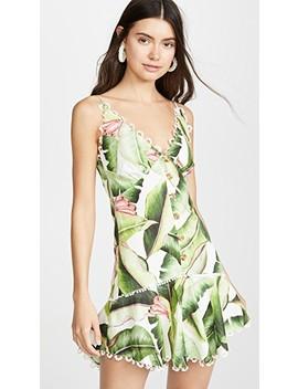 white-palms-mini-dress by farm-rio