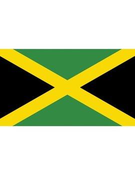 """Sea Sense Jamaica Flag, 12"""" X 18"""" by Sea Sense"""
