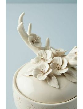 new-anthropologie-home-decor-floral-fauna-deer-antlers-ceramic-candle by ebay-seller