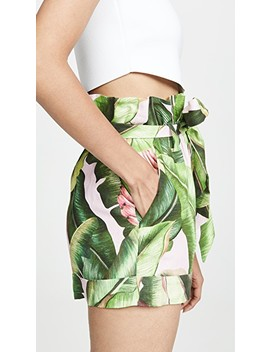 Pink Palms Paperbag Shorts by Farm Rio