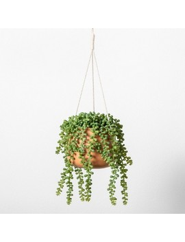 Hanging Plant String Of Pearls   Hearth &Amp; Hand With Magnolia by Hearth & Hand With Magnolia