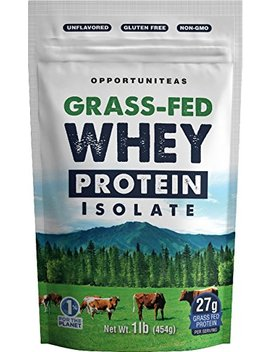 Grass Fed Whey Protein Powder Isolate   Unflavored + Cold Processed + Undenatured   Pure Wisconsin Grass Fed Protein For Shake, Smoothie, Drink, Or Food   Natural + Non Gmo + No Gluten   1 Pound by Opportuniteas