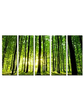 Sechars   Large 5 Panel Canvas Prints Summer Green Forest Sunset Pictures Natural Landscape Painting Wall Art Forest Sunshine Canvas Wall Art Ready To Hang Total Size 32x60inches by Sechars