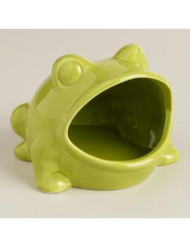 Green Frog Soap Dish by World Market