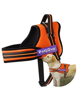 petlove-dog-harness,-soft-leash-padded-no-pull-dog-harness-with-all-kinds-of-size by petlove