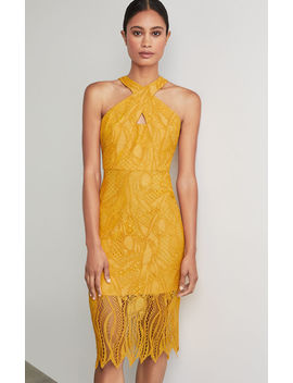Crisscross Abstract Lace Dress by Bcbgmaxazria