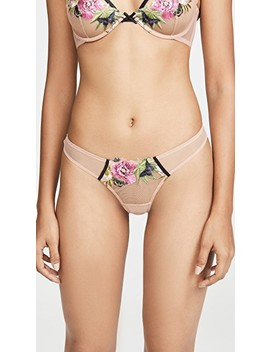 Enchanted Embroidery Thong by Fleur Du Mal