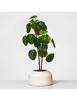 "22"" X 9.5"" Artificial Potted Pilea Plant Green   Opalhouse by Opalhouse"