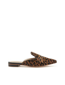 Tracy Flat Mule by Schutz