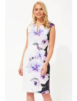 Placement Floral Print Scuba Dress by Roman Originals