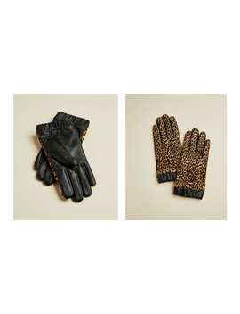 Leopard Print Gloves by Ted Baker