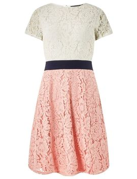Blush And Ivory Colour Block Lace Skater Dress by Dorothy Perkins