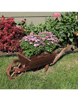Amarion Wooden Wheelbarrow Garden Planter by August Grove