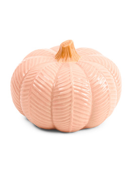 8.5in Ceramic Pumpkin by Tj Maxx
