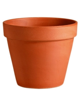 Terracotta Plant Pot   11cm by Homebase