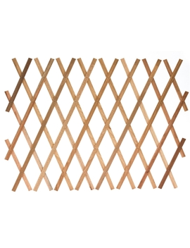 Sprout Sprout Garden Expanding Trellis 0 1.8m X 0.3m by Homebase