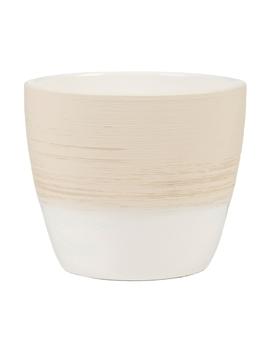 Vanilla Cream Pot   14cm by Homebase