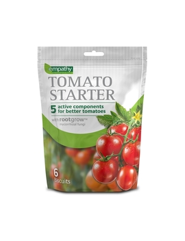 Empathy Empathy Tomato Starter With Rootgrow by Homebase