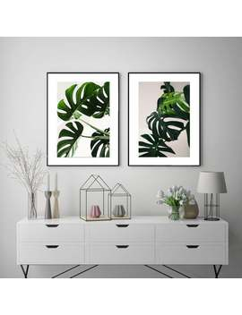 Set Of 2 Botanical Art Prints. Wall Art. Poster Prints. Leaves Art Prints. Botanical Posters. Set Of Two Framed Prints. Green Wall Art Decor by Etsy