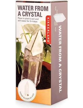 Water From A Crystal Glass | Plant Feeder by Homewares