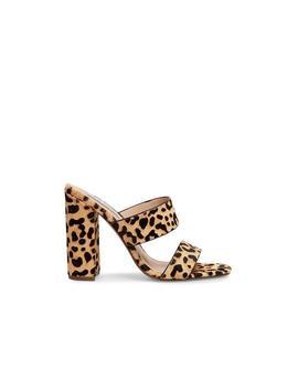 Tegan L Leopard by Steve Madden