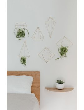 Umbra Prisma Wall Decor by Pacsun
