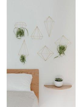 umbra-prisma-wall-decor by pacsun