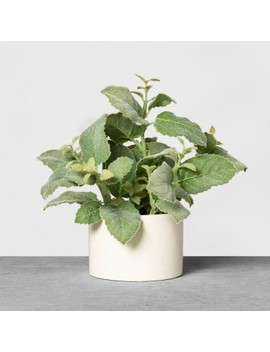 Faux Mint Potted Plant   Hearth &Amp; Hand With Magnolia by Hearth & Hand With Magnolia