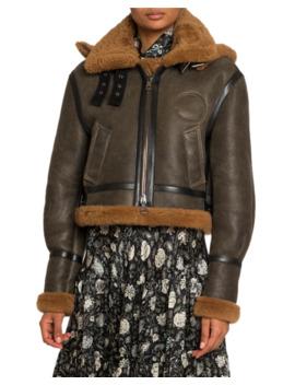 Shearling Trim Aviator Leather Jacket W/ Hood by Chloe