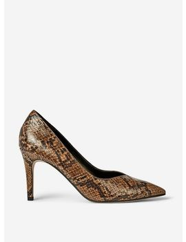 Multi Coloured Snake Print 'dash' Court Shoes by Dorothy Perkins