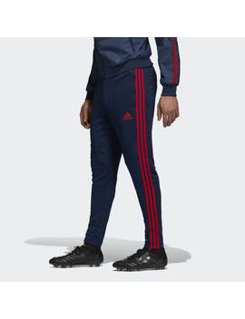 Arsenal Training Pants by Adidas