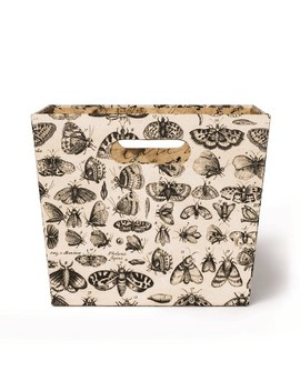 "14""X12""X9.7"" Storage Bin Moth Print Cream/Brown   John Derian For Target by John Derian For Target"